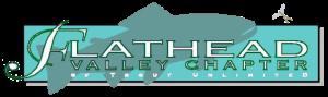 FVTU Logo
